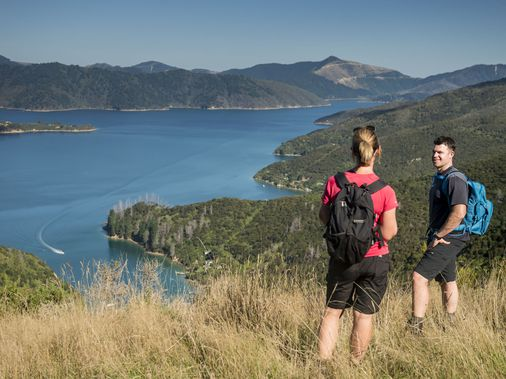 Walk the Queen Charlotte Track