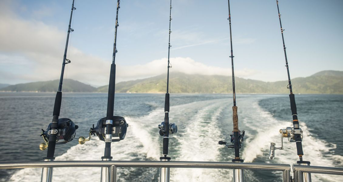 Fishing in the Marlborough Sounds