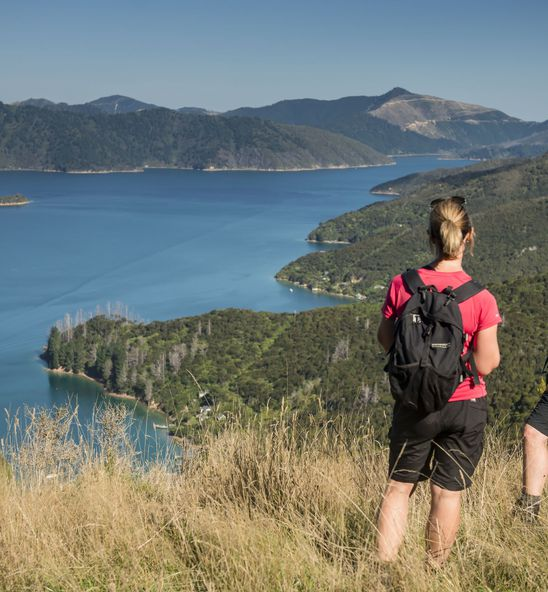 View from the Queen Charlotte Track