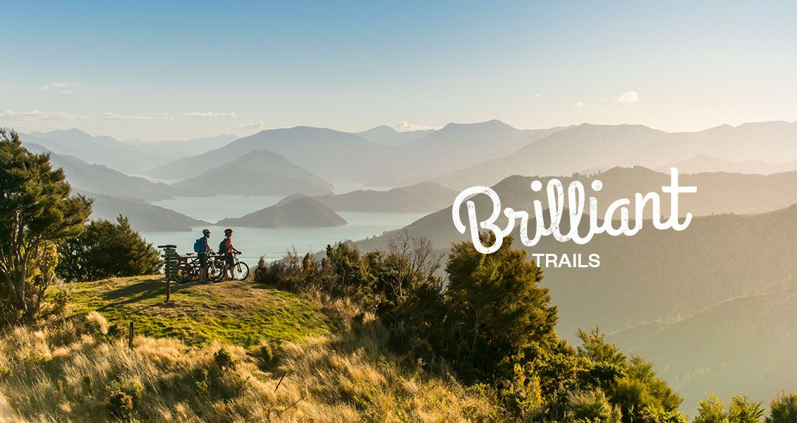 Biking the Queen Charlotte Track in Marlborough