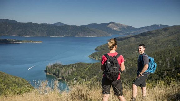 Queen Charlotte Track day walks