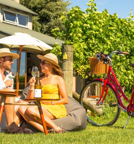 Wine tasting by bike