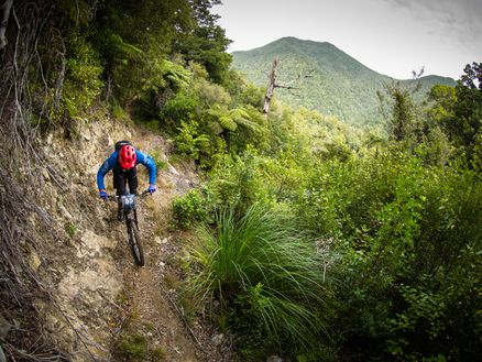 Brilliant views and riding along the Nydia Track in the Marlborough Sounds. Photo: Caleb Smith