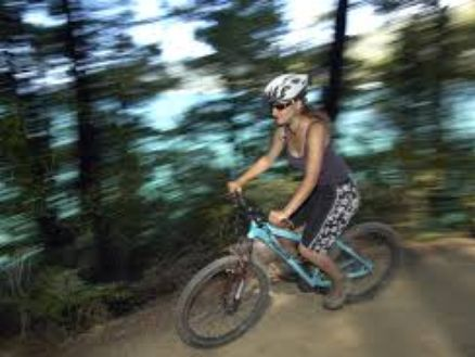The Queen Charlotte Track in the Marlborough Sounds, New Zealand, is a brilliant grade 3-4 mountain biking experience
